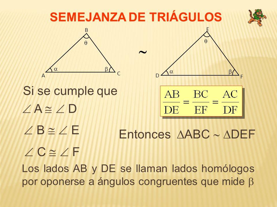 SEMEJANZA DE TRIÁGULOS Si se cumple que C A B F D E A D B E C F Entonces ABC DEF Los lados AB y DE se llaman lados homólogos por oponerse a ángulos co