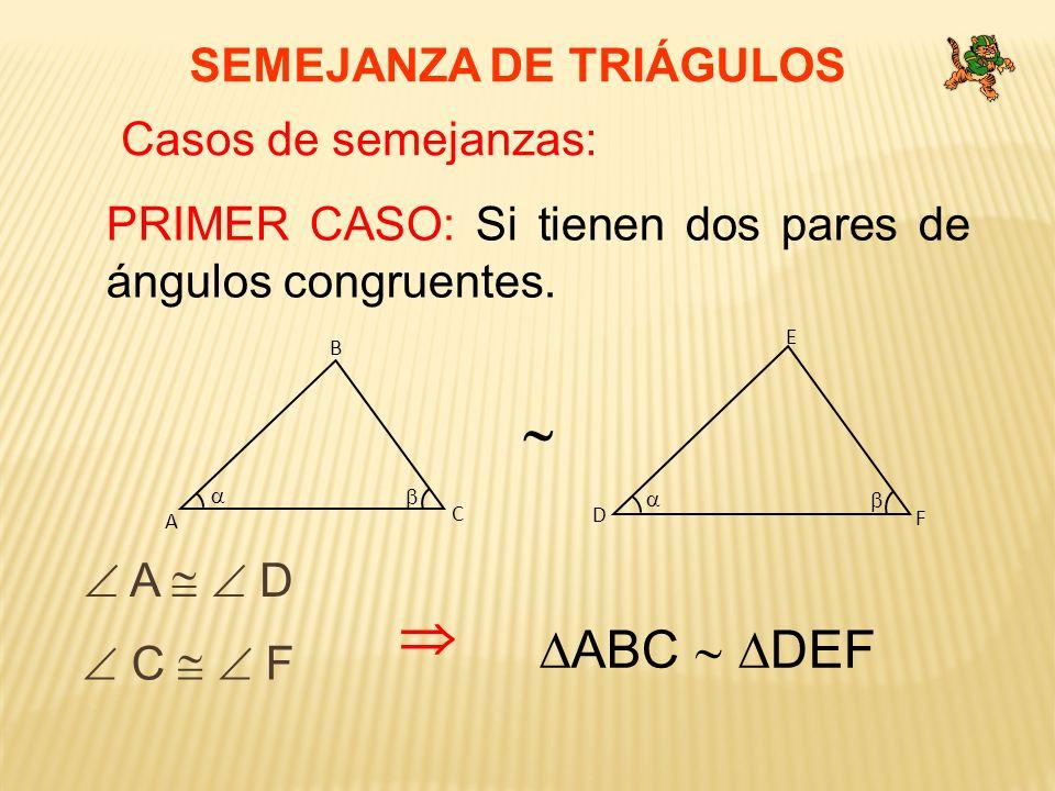 SEMEJANZA DE TRIÁGULOS Casos de semejanzas: PRIMER CASO: Si tienen dos pares de ángulos congruentes. C A B F D E A D C F ABC DEF