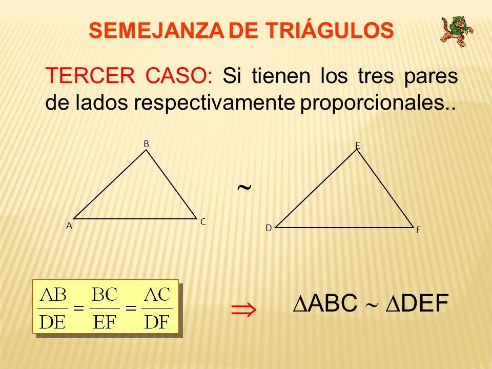 SEMEJANZA DE TRIÁGULOS TERCER CASO: Si tienen los tres pares de lados respectivamente proporcionales.. C A B F D E ABC DEF