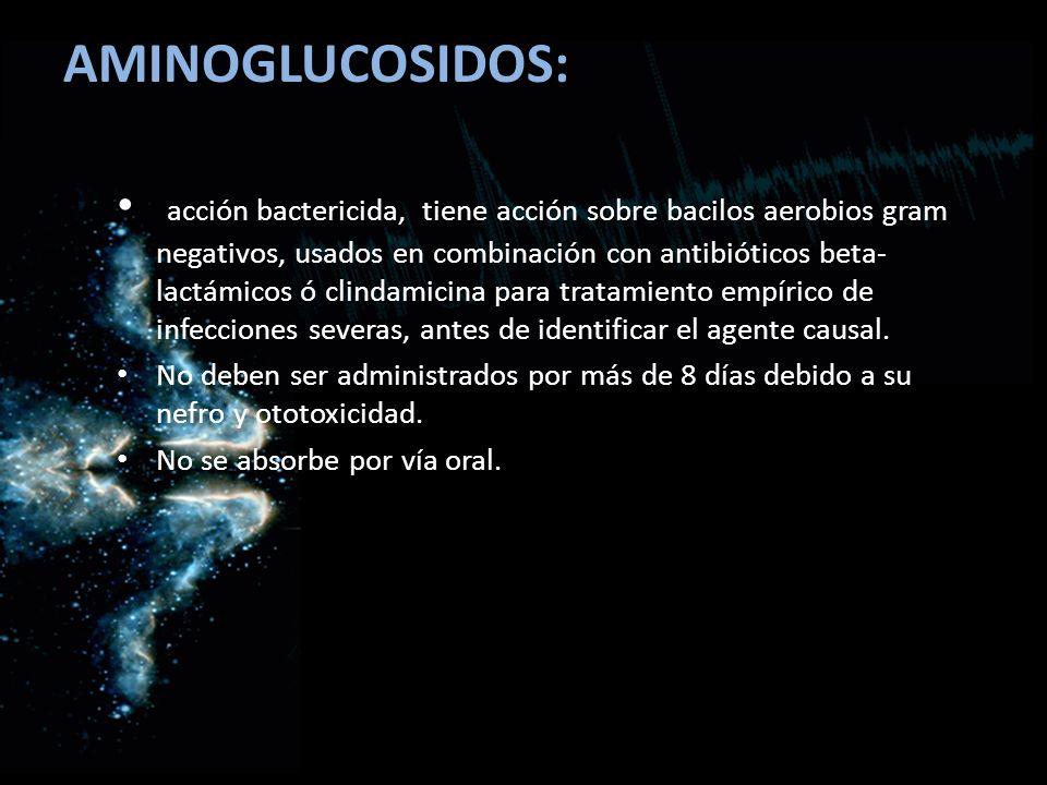 AMINOGLUCOSIDOS: acción bactericida, tiene acción sobre bacilos aerobios gram negativos, usados en combinación con antibióticos beta- lactámicos ó cli