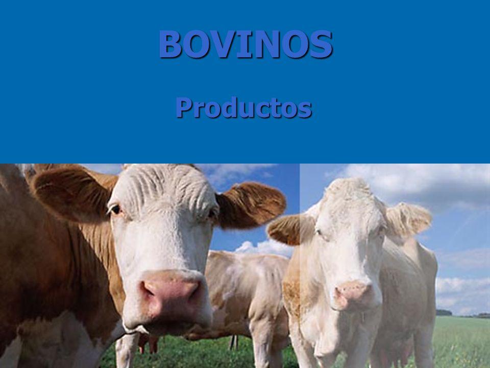 4 Productos BOVINOS