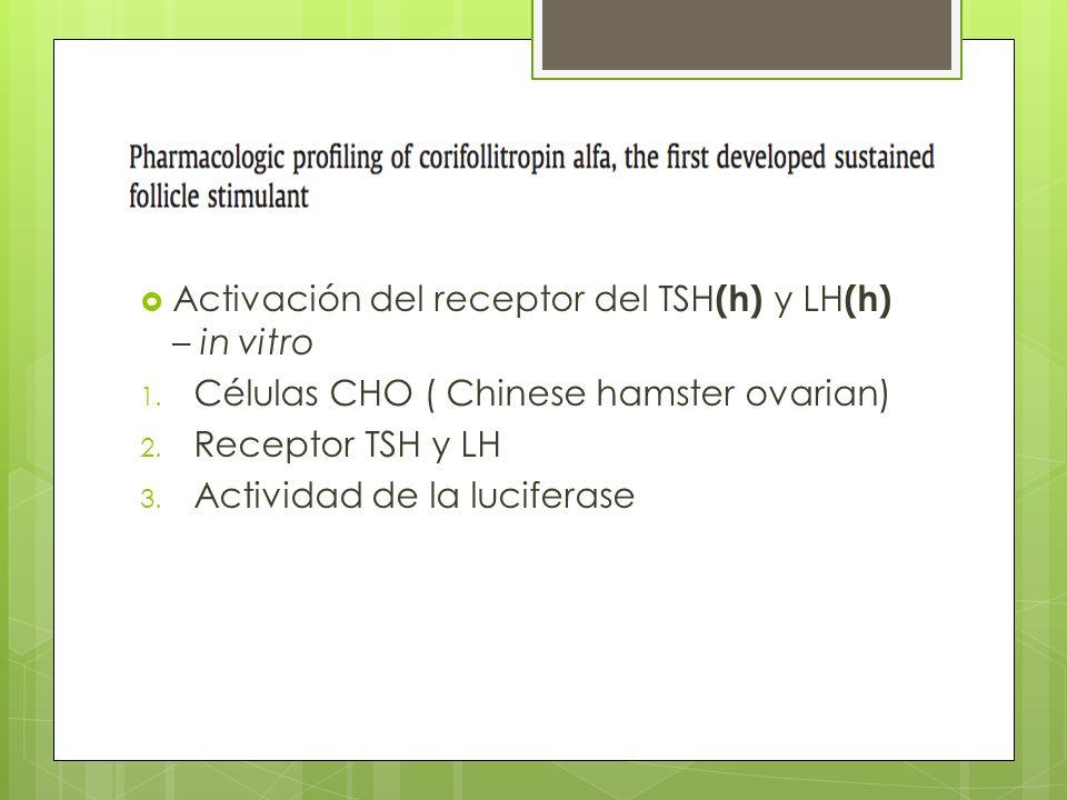 Activación del receptor del TSH (h) y LH (h) – in vitro 1. Células CHO ( Chinese hamster ovarian) 2. Receptor TSH y LH 3. Actividad de la luciferase
