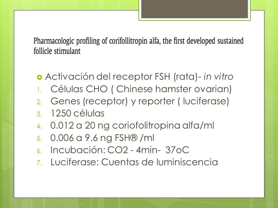 Activación del receptor FSH (rata)- in vitro 1. Células CHO ( Chinese hamster ovarian) 2. Genes (receptor) y reporter ( luciferase) 3. 1250 células 4.