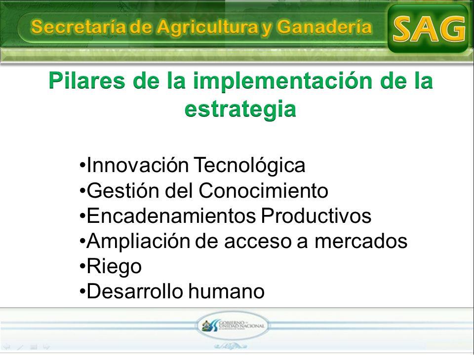 Innovación Tecnológica Gestión del Conocimiento Encadenamientos Productivos Ampliación de acceso a mercados Riego Desarrollo humano