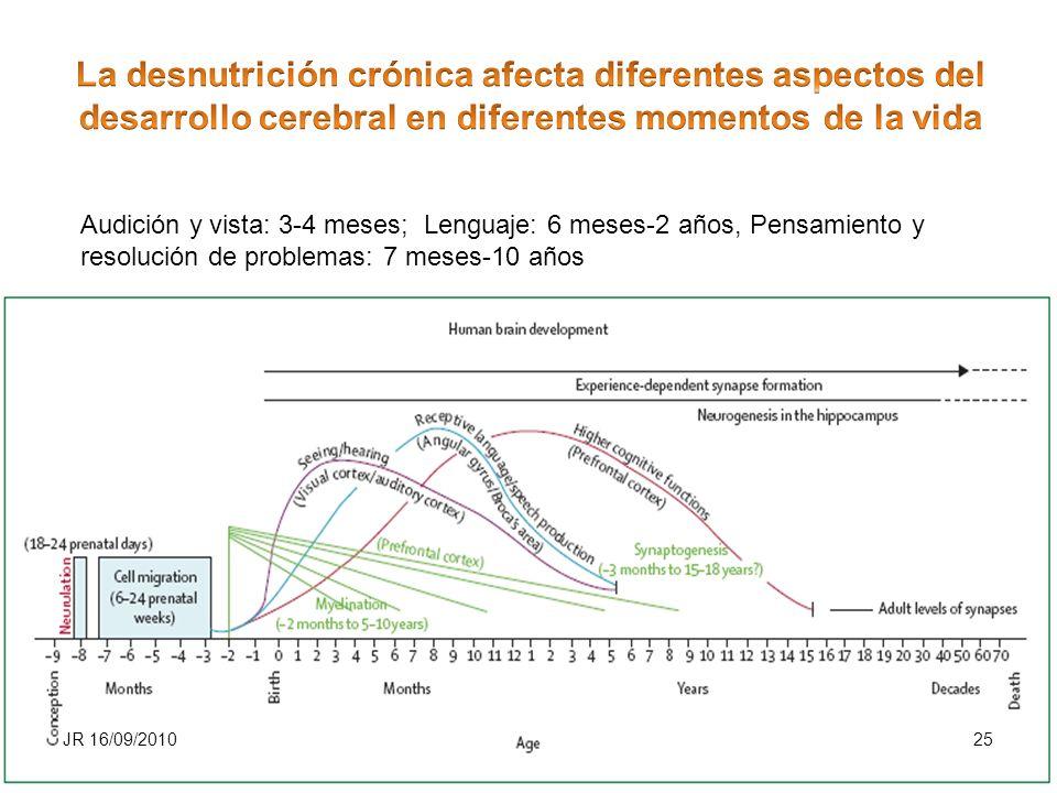 Audición y vista: 3-4 meses; Lenguaje: 6 meses-2 años, Pensamiento y resolución de problemas: 7 meses-10 años JR 16/09/201025