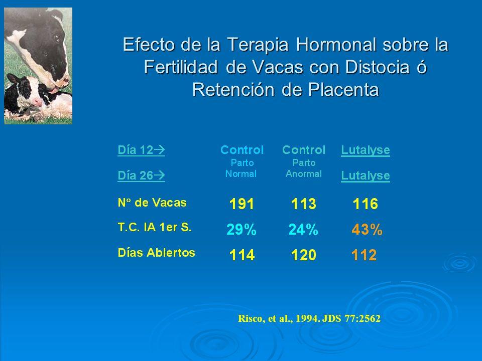 Efecto de la Terapia Hormonal sobre la Fertilidad de Vacas con Distocia ó Retención de Placenta Risco, et al., 1994. JDS 77:2562