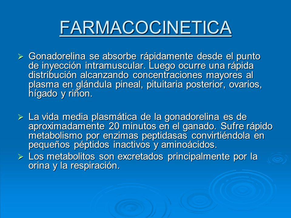 FARMACOCINETICA Gonadorelina se absorbe rápidamente desde el punto de inyección intramuscular. Luego ocurre una rápida distribución alcanzando concent