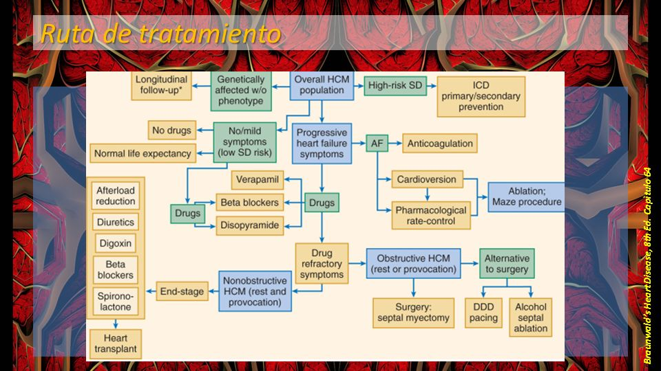 Ruta de tratamiento Braunwalds Heart Disease, 8th Ed. Capìtulo 64