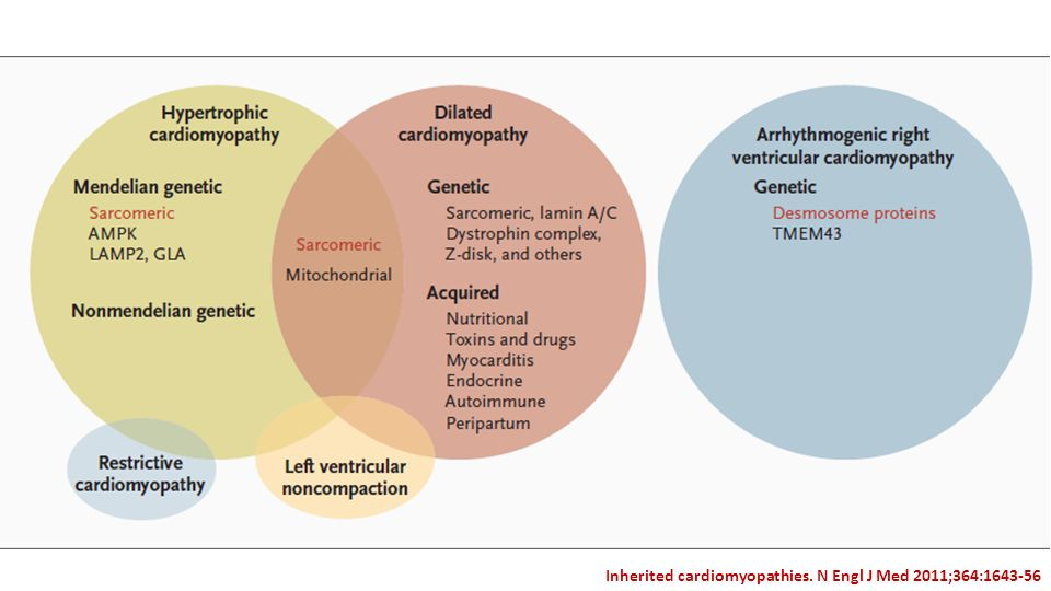 Inherited cardiomyopathies. N Engl J Med 2011;364:1643-56