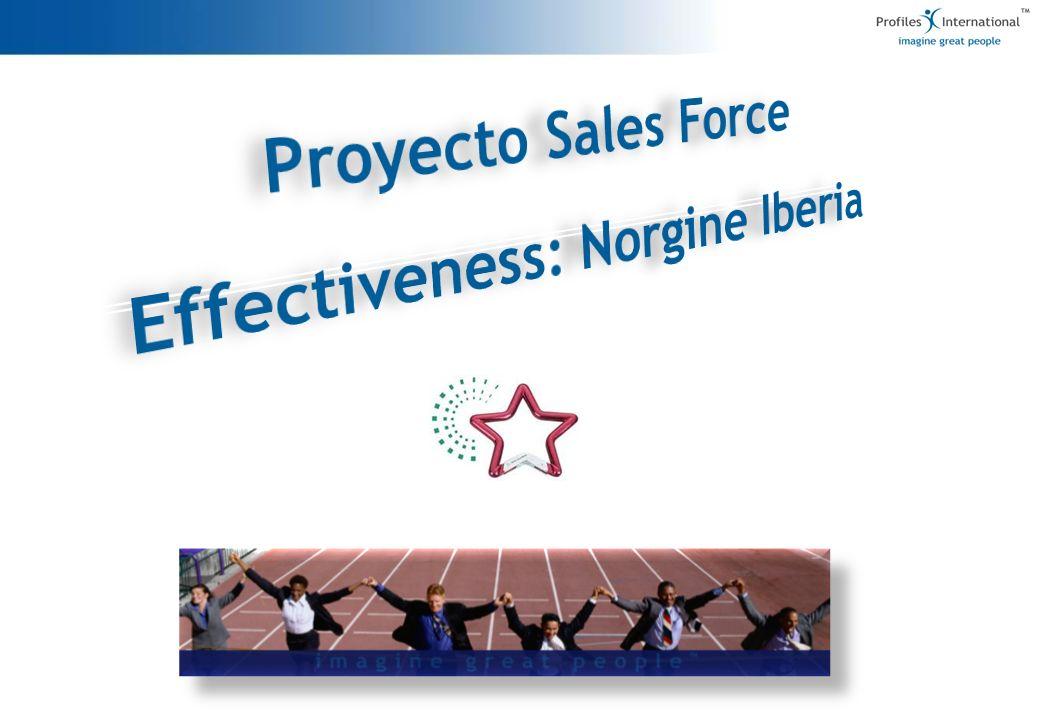 ¿Cómo conseguimos ayudar a mejorar el desempeño de las personas dentro del equipo comercial de Norgine.