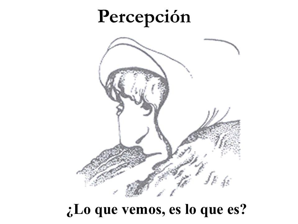 Percepción ¿Lo que vemos, es lo que es?