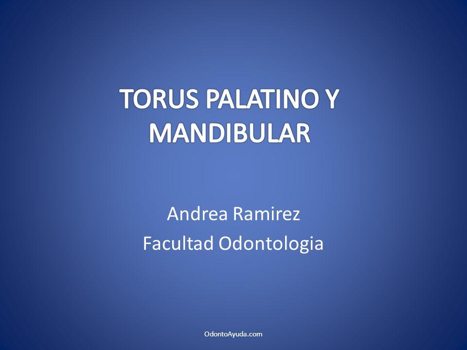 Andrea Ramirez Facultad Odontologia OdontoAyuda.com