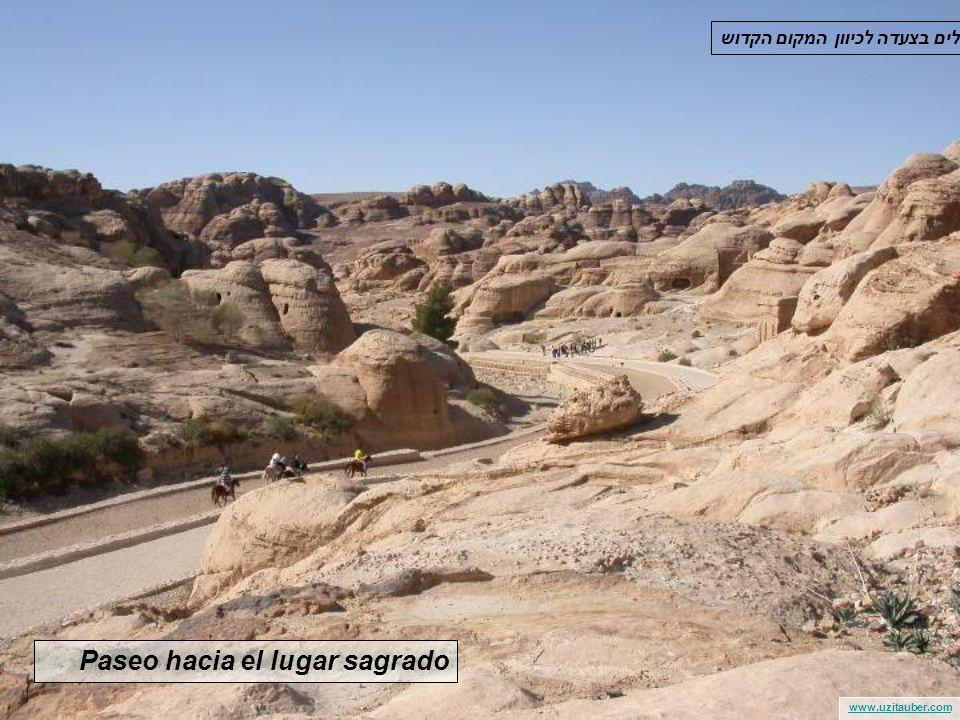 www.uzitauber.com De repente, la Ciudad de Petra es descubierta