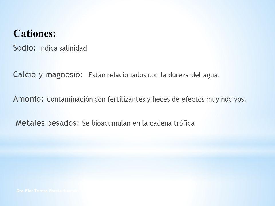 Dra.Flor Teresa García Huamán 16 Cationes: Sodio: Indica salinidad Calcio y magnesio: Están relacionados con la dureza del agua. Amonio: Contaminación