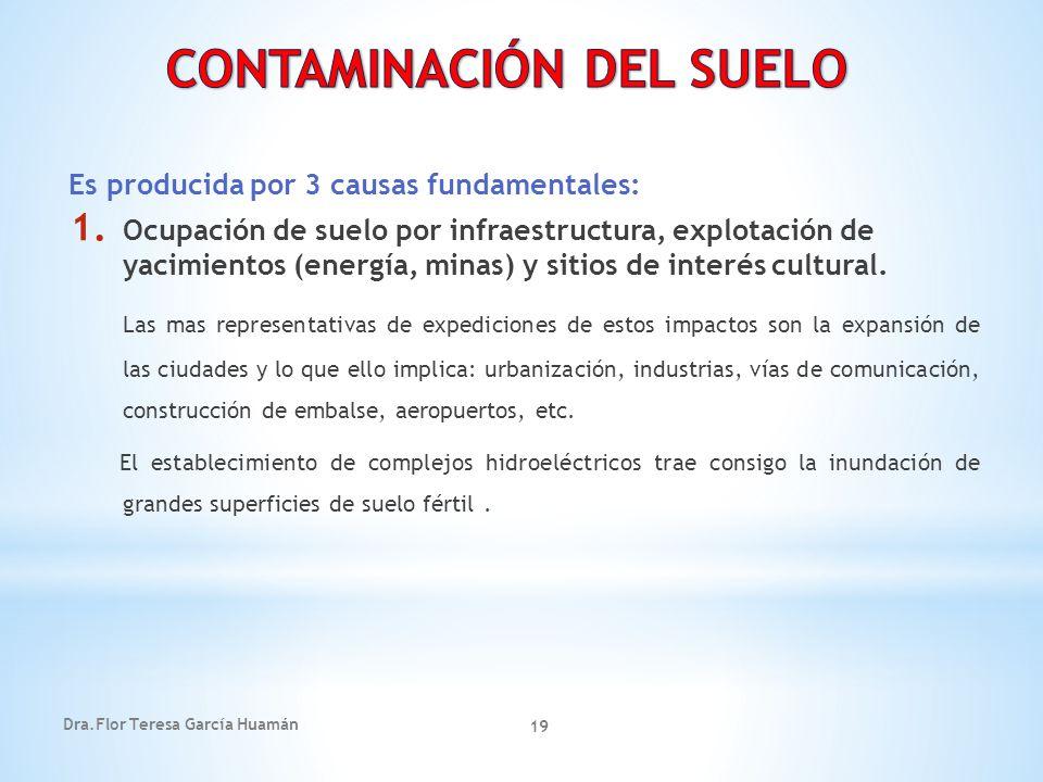Dra.Flor Teresa García Huamán 19 Es producida por 3 causas fundamentales: 1. Ocupación de suelo por infraestructura, explotación de yacimientos (energ