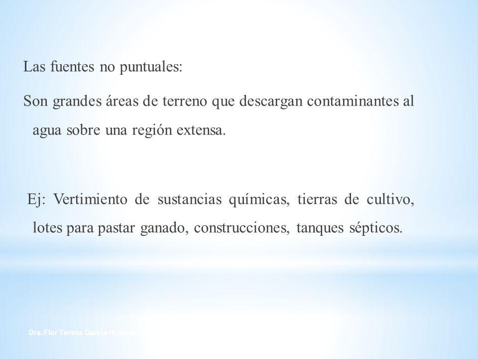Dra.Flor Teresa García Huamán 6 Las fuentes no puntuales: Son grandes áreas de terreno que descargan contaminantes al agua sobre una región extensa. E