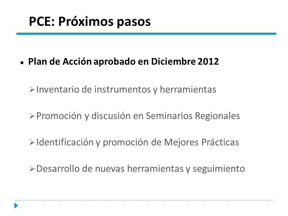 Plan de Acción aprobado en Diciembre 2012 Inventario de instrumentos y herramientas Promoción y discusión en Seminarios Regionales Identificación y pr