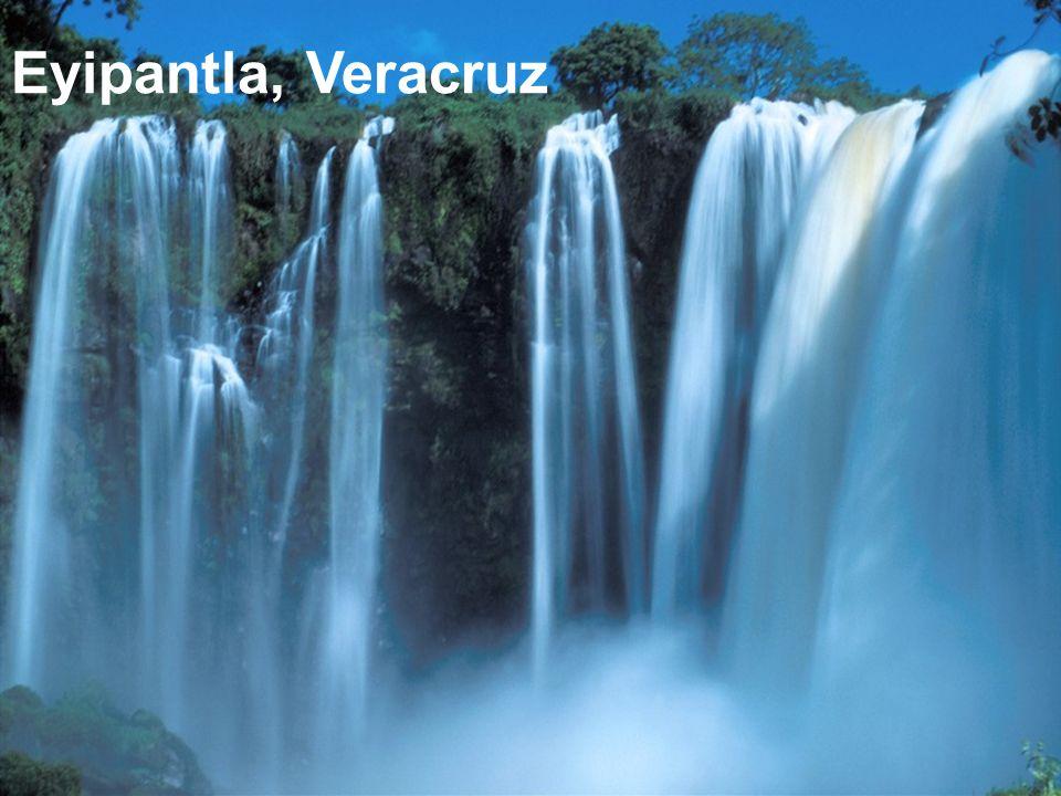 Reserva de la biosfera de la Mariposa Monarca (*) Michoacán (*) Golfo de California Reserva de la biosfera Único lugar en el mundo donde existen cascadas submarinas de arena (*) Tehuacan (Puebla) Reserva de la biosfera de cactus