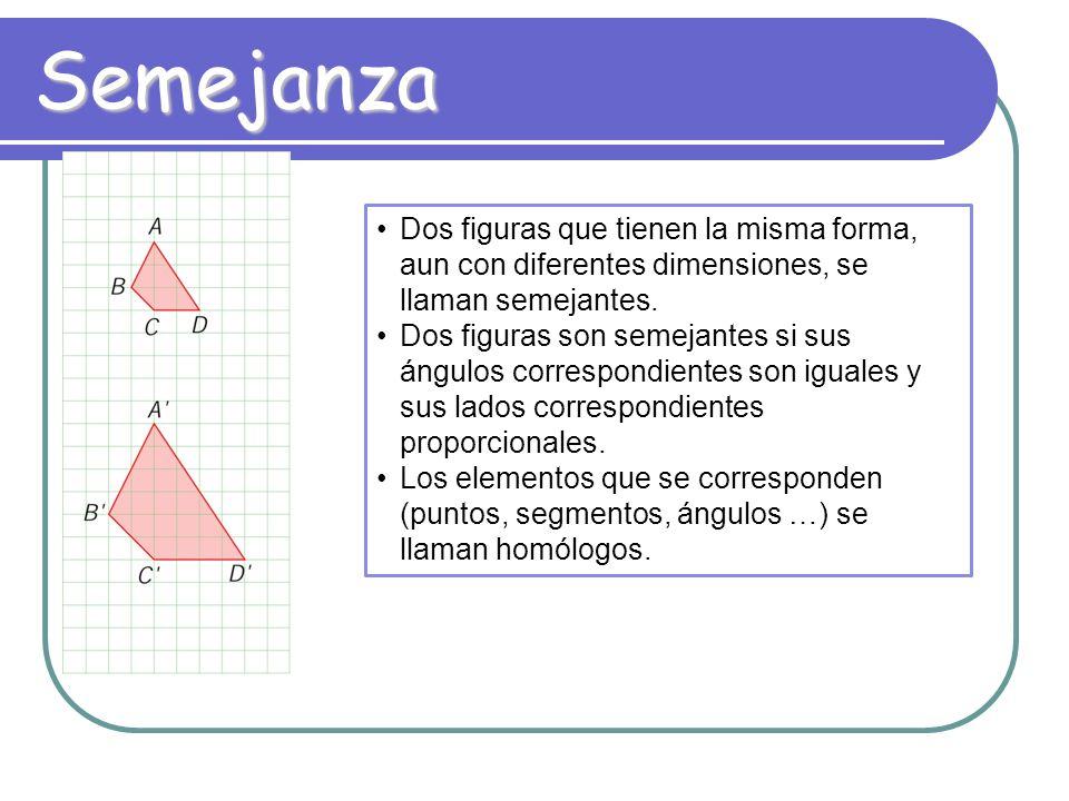 23 ¿Cómo son las figuras mostradas? Son proporcionales Son semejantes