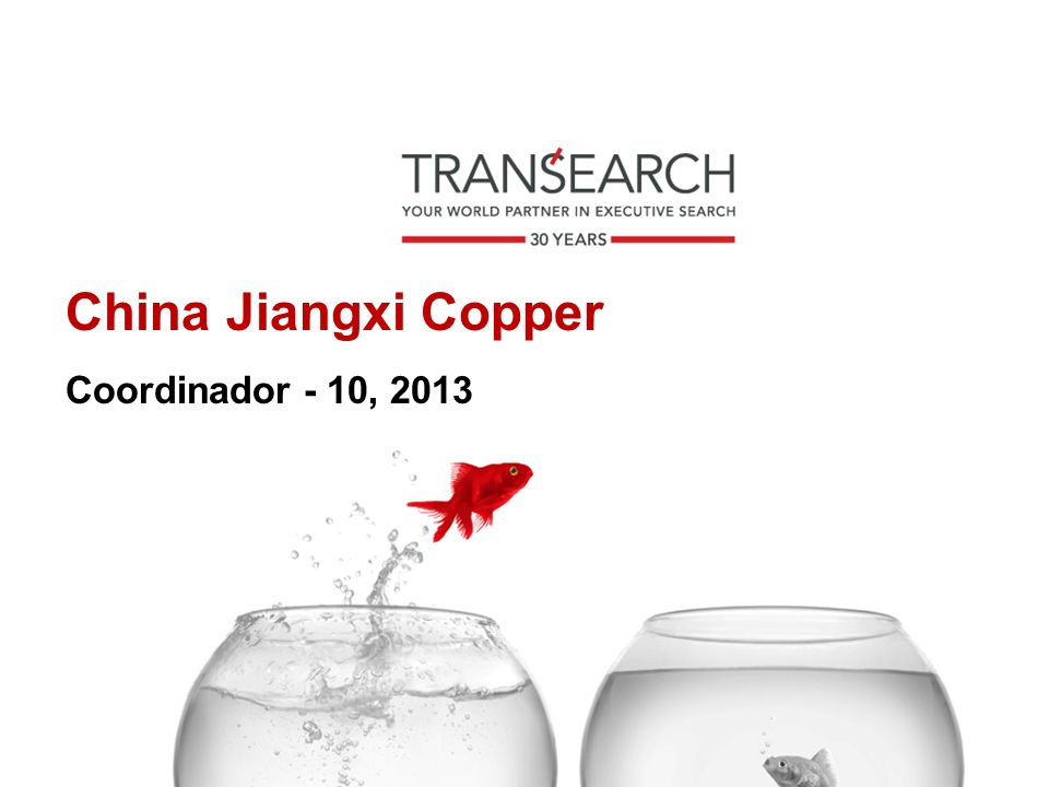 China Jiangxi Copper Coordinador - 10, 2013