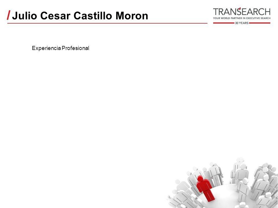 Julio Cesar Castillo Moron Experiencia Profesional