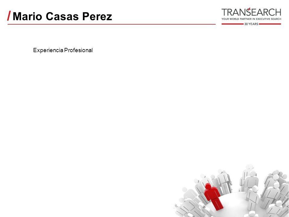 Mario Casas Perez Experiencia Profesional