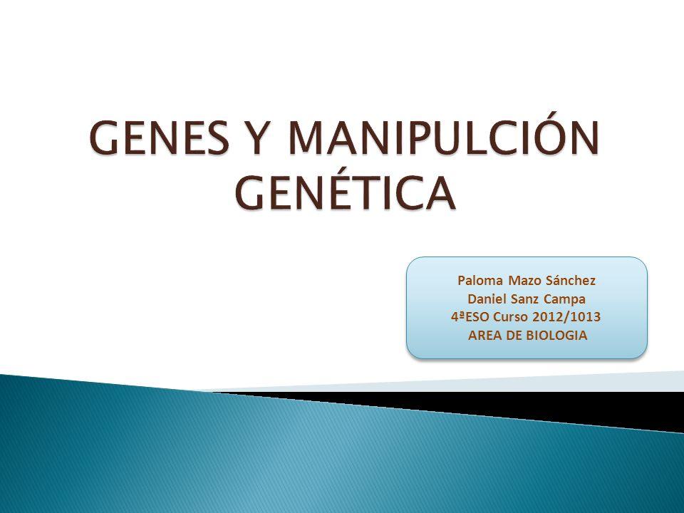 1) El ADN como material de los genes.2) Información del ADN.