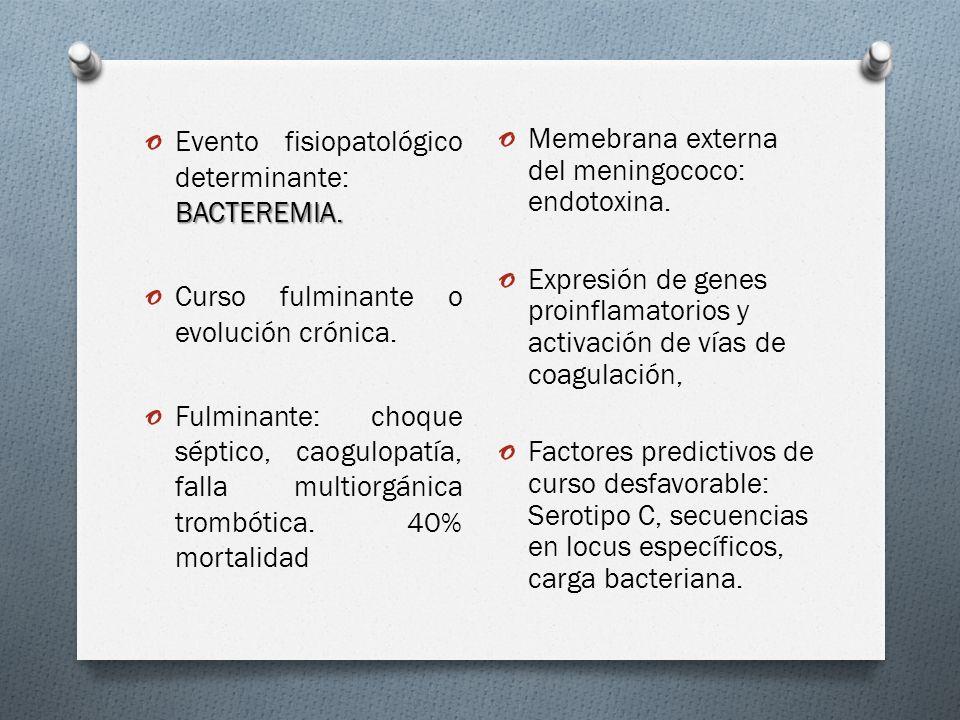 BACTEREMIA. o Evento fisiopatológico determinante: BACTEREMIA.