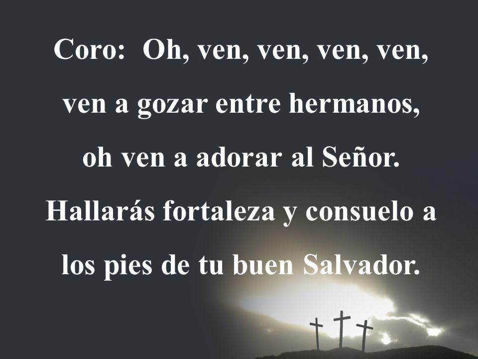 Coro: Oh, ven, ven, ven, ven, ven a gozar entre hermanos, oh ven a adorar al Señor. Hallarás fortaleza y consuelo a los pies de tu buen Salvador.
