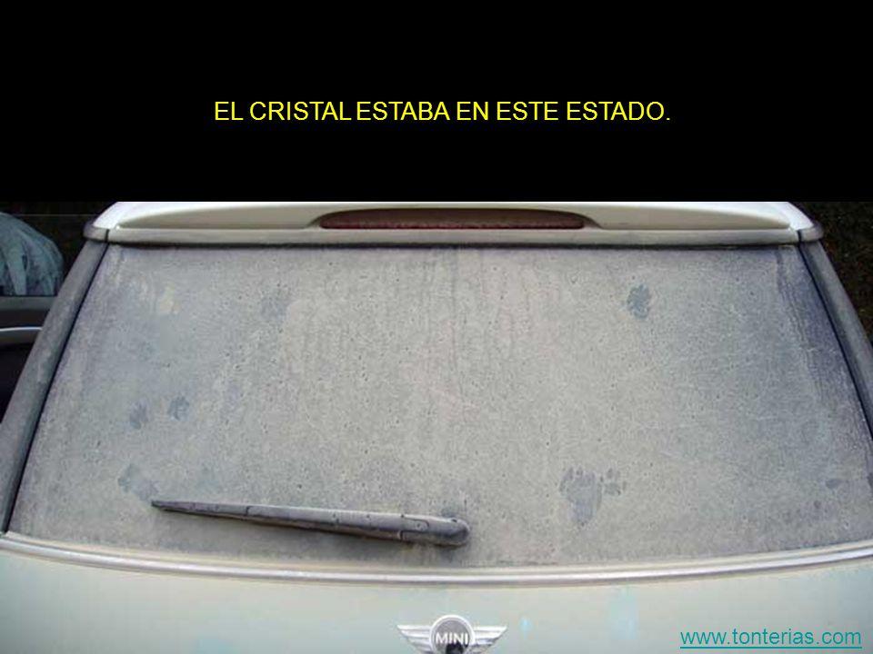 EL CRISTAL ESTABA EN ESTE ESTADO. www.tonterias.com