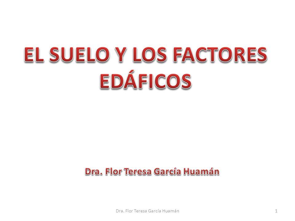 1Dra. Flor Teresa García Huamán