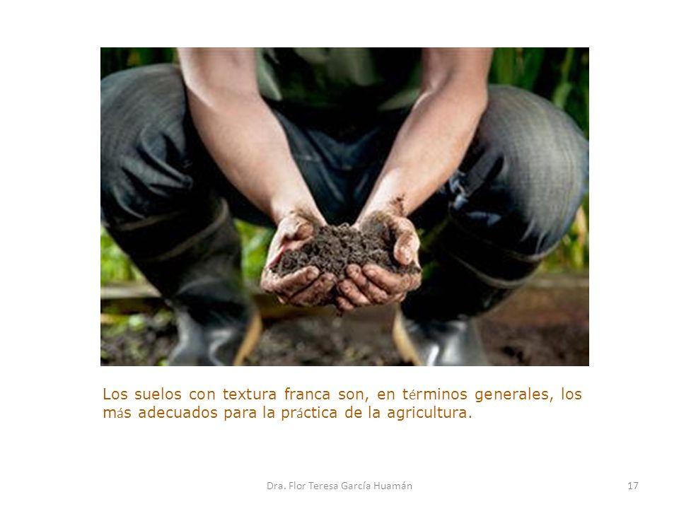 Los suelos con textura franca son, en t é rminos generales, los m á s adecuados para la pr á ctica de la agricultura. 17Dra. Flor Teresa García Huamán