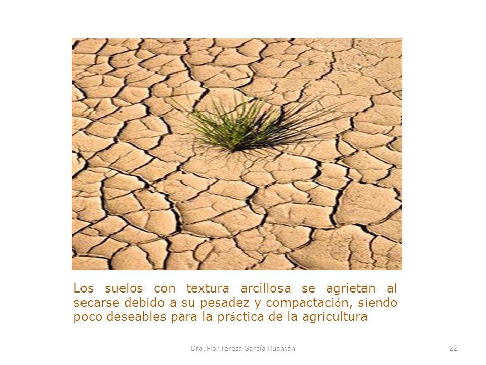 Los suelos con textura arcillosa se agrietan al secarse debido a su pesadez y compactaci ó n, siendo poco deseables para la pr á ctica de la agricultu
