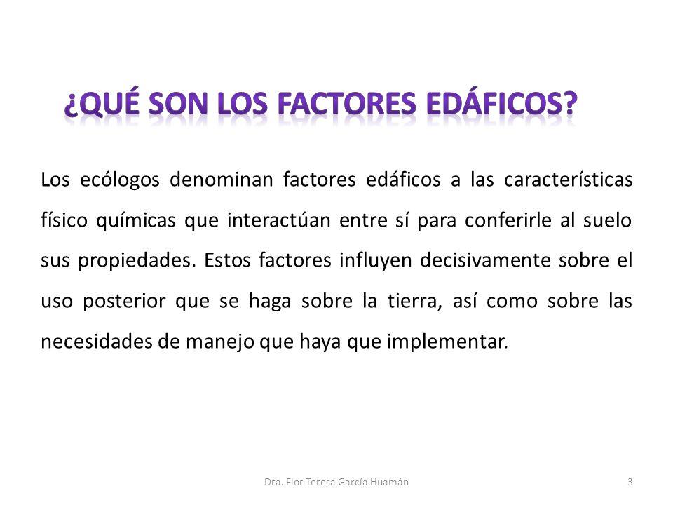 PRINCIPALES FACTORES EDÁFICOS: Color.Textura. Estructura física.