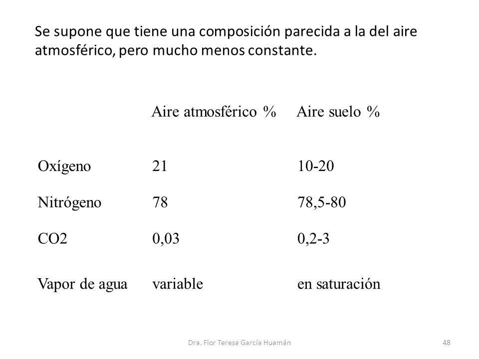 Se supone que tiene una composición parecida a la del aire atmosférico, pero mucho menos constante. Aire atmosférico % Aire suelo % Oxígeno 21 10-20 N