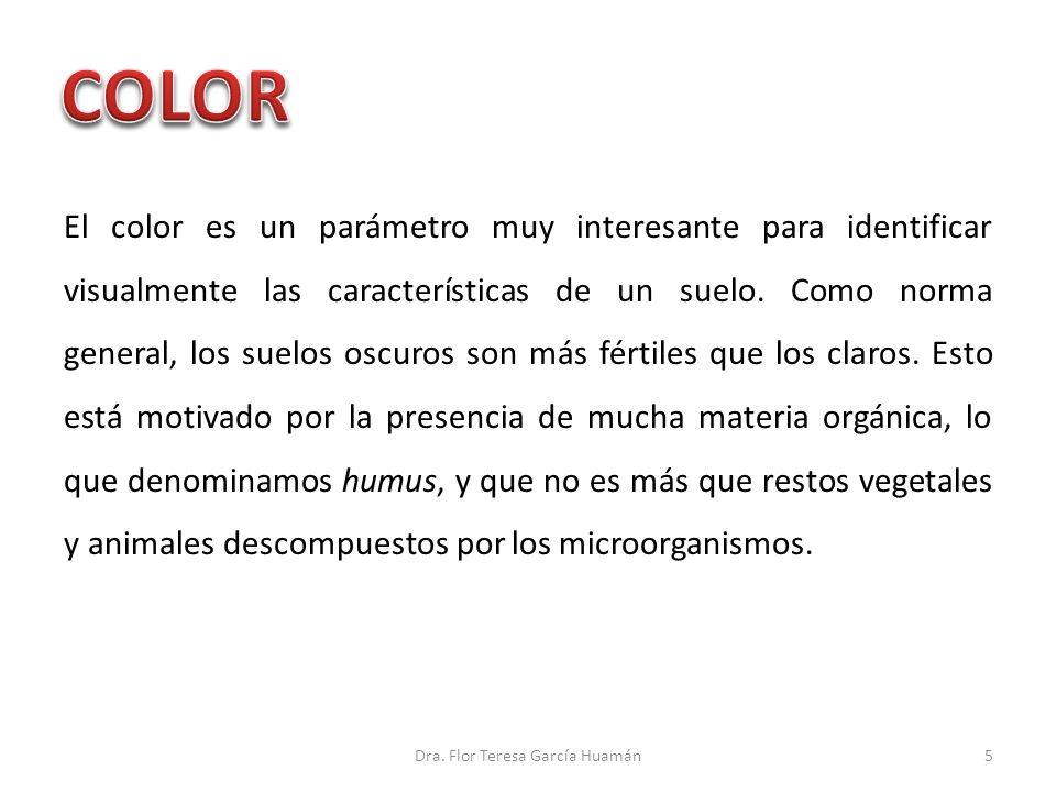 El color es un parámetro muy interesante para identificar visualmente las características de un suelo. Como norma general, los suelos oscuros son más