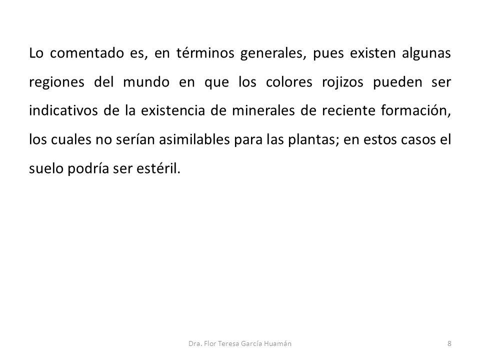 39Dra. Flor Teresa García Huamán