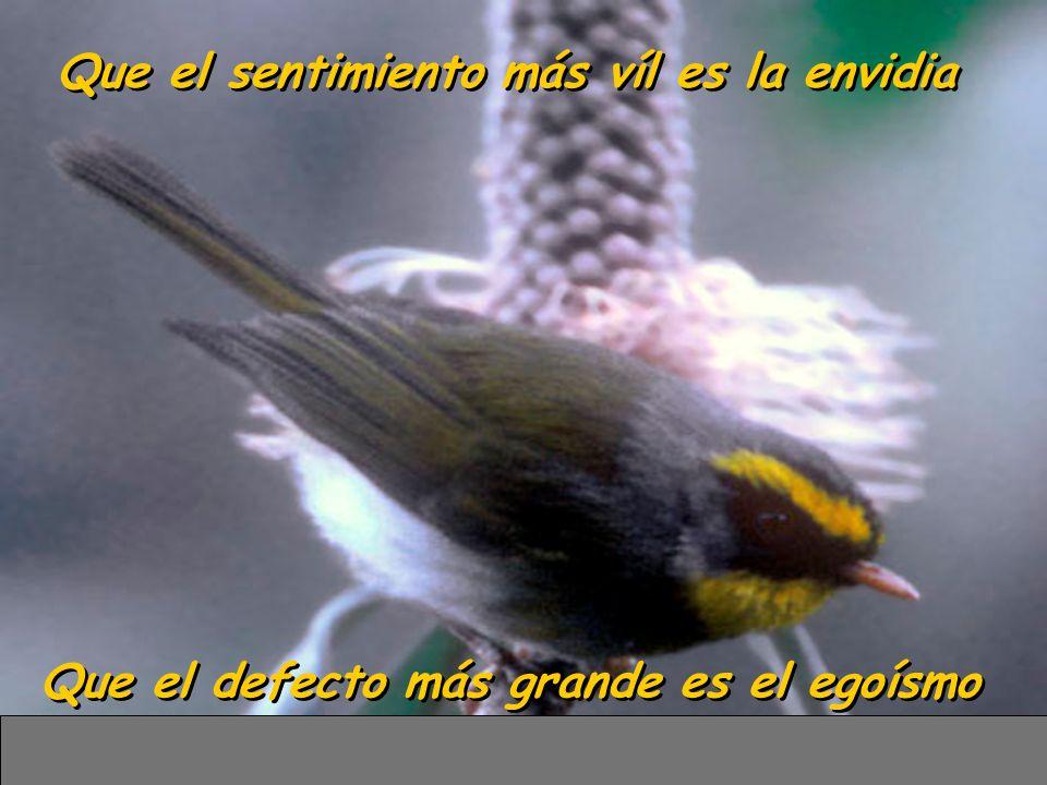 Que el sentimiento más víl es la envidia Que el defecto más grande es el egoísmo