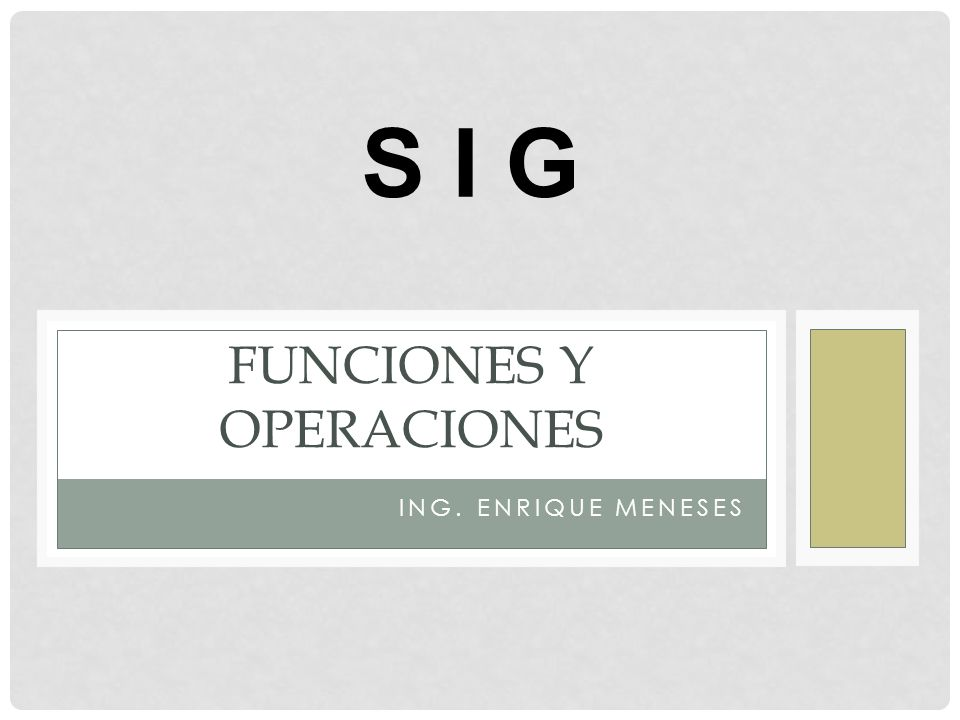 ING. ENRIQUE MENESES FUNCIONES Y OPERACIONES S I G