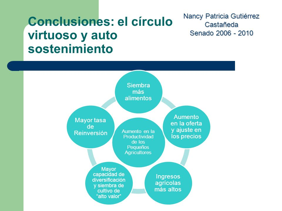 Nancy Patricia Gutiérrez Castañeda Senado 2006 - 2010 Conclusiones: el círculo virtuoso y auto sostenimiento Aumento en la Productividad de los Pequeñ