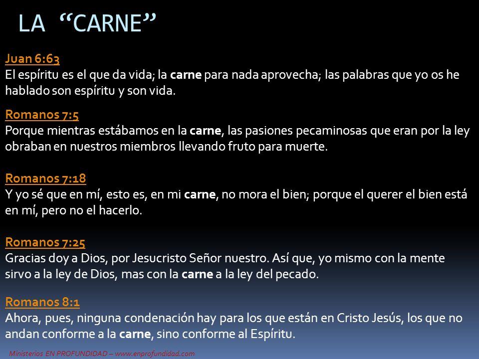 Ministerios EN PROFUNDIDAD – www.enprofundidad.com LA CARNE Juan 6:63 Juan 6:63 El espíritu es el que da vida; la carne para nada aprovecha; las palab