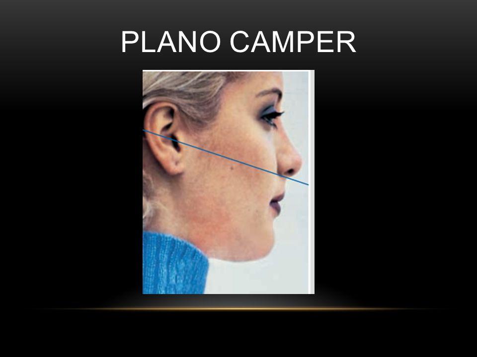 PLANO CAMPER