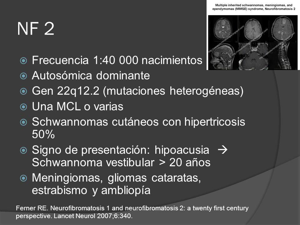 NF 2 Frecuencia 1:40 000 nacimientos Autosómica dominante Gen 22q12.2 (mutaciones heterogéneas) Una MCL o varias Schwannomas cutáneos con hipertricosi