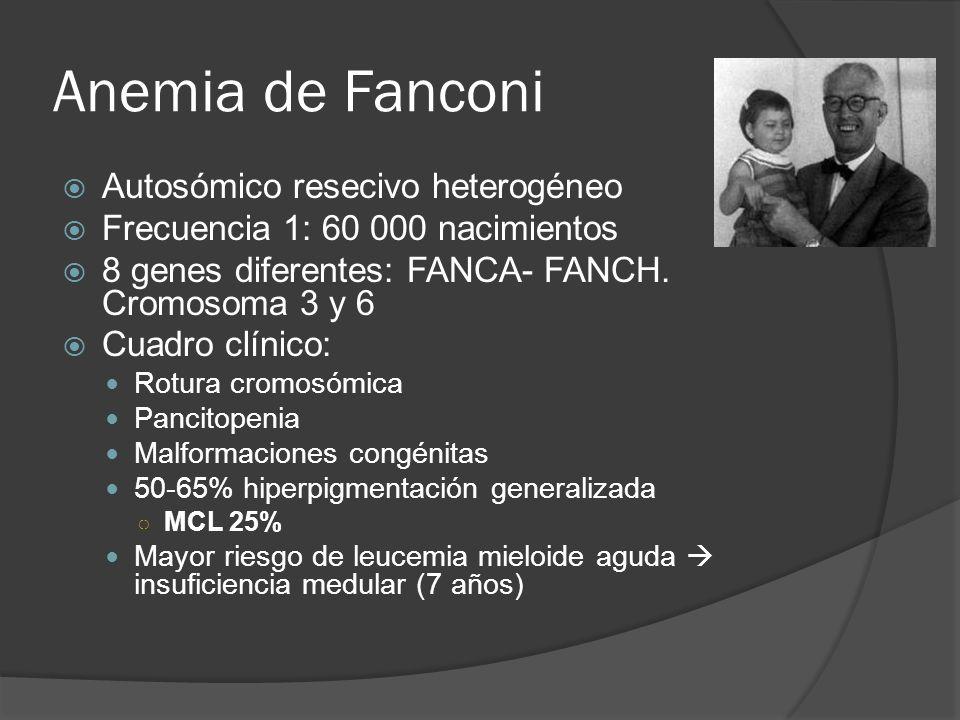 Anemia de Fanconi Autosómico resecivo heterogéneo Frecuencia 1: 60 000 nacimientos 8 genes diferentes: FANCA- FANCH. Cromosoma 3 y 6 Cuadro clínico: R