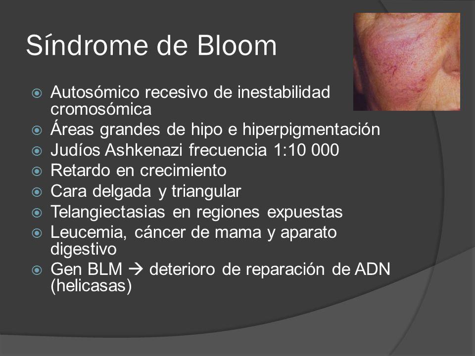 Síndrome de Bloom Autosómico recesivo de inestabilidad cromosómica Áreas grandes de hipo e hiperpigmentación Judíos Ashkenazi frecuencia 1:10 000 Reta