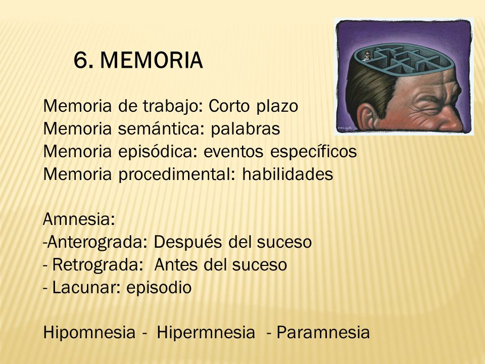 6. MEMORIA Memoria de trabajo: Corto plazo Memoria semántica: palabras Memoria episódica: eventos específicos Memoria procedimental: habilidades Amnes