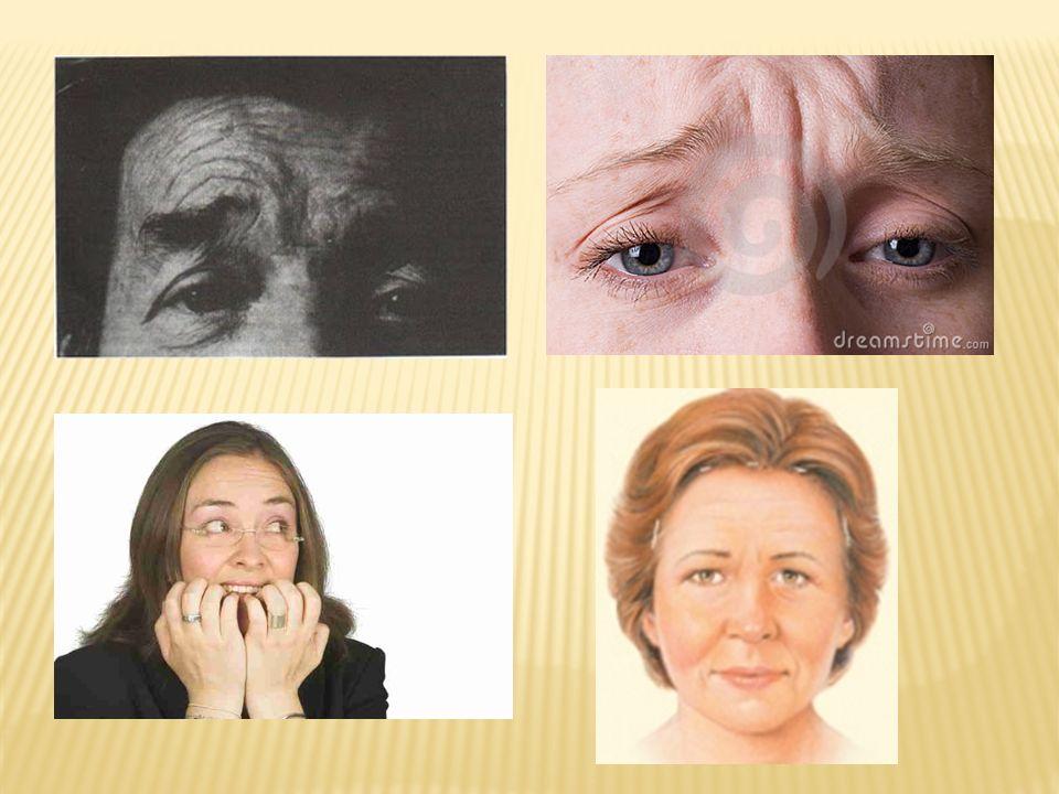 1.ORIENTACIÓN Autopsíquica: Con datos generales Quién es usted?, que hace, edad.
