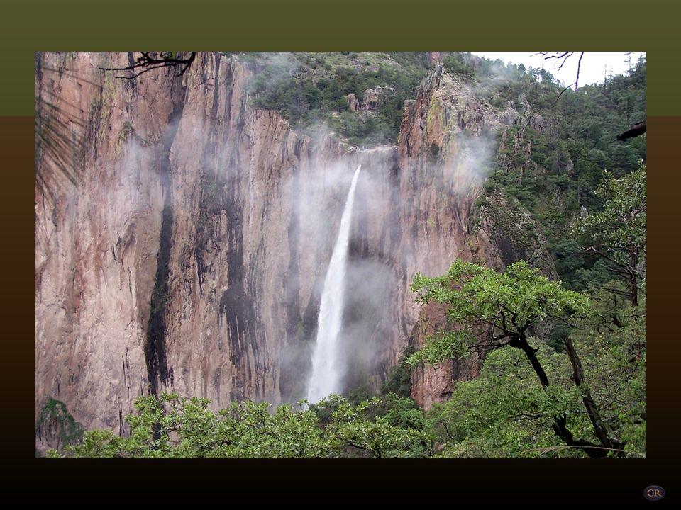 Basaseachi Municipio de Ocampo Basaseachi quiere decir en lengua rarámuri Lugar de cascada o de coyotes. Está situada a 274 Km al oeste de la ciudad d