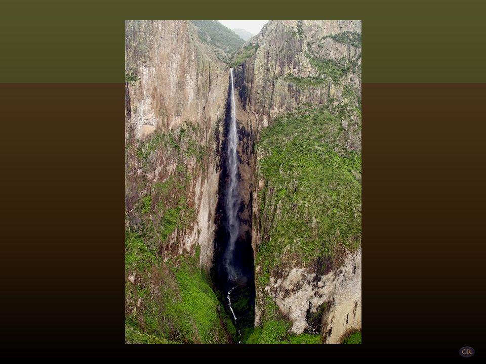 La cascada de Piedra Volada se encuentra ubicada en la Barranca de Candameña a 7 kilómetros de la comunidad de Basaseachi, y se accede a ella por la p