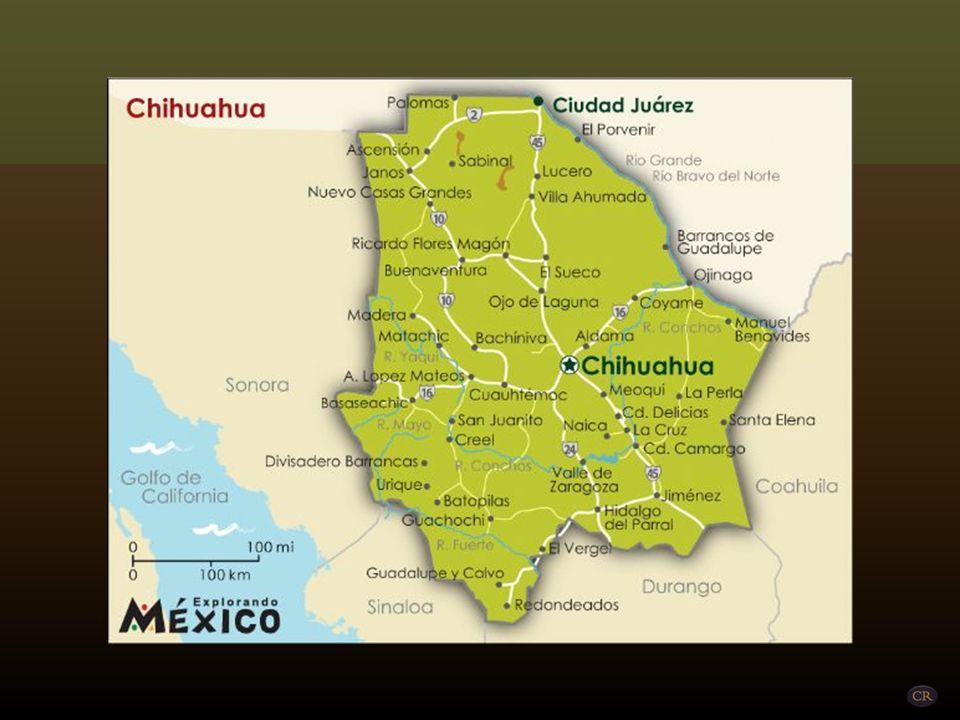 NAICA Municipio de Saucillo Un poco más hacia el norte de la Laguna Juanota, al este de la Sierra Tarahumara y al centro-sur del estado de Chihuahua, se encuentra la mina de Naica, mundialmente famosa por la llamada Cueva de los Cristales, descubierta accidentalmente en el año 2000, cuando se exploraban las minas.